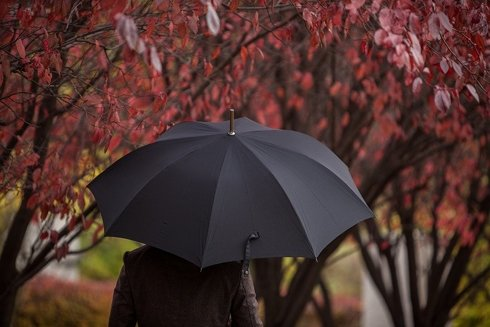 Classic umbrella blue navy