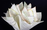 LINEN POCKET SQUARE - ONE thread - FOUR COLOR